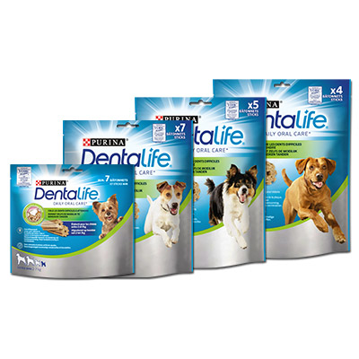 Dentalife_09-18_packshot_400x400_v3