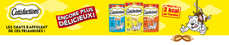 Banner2_Catisfactions