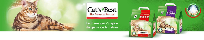 Banner2_Cats_Best